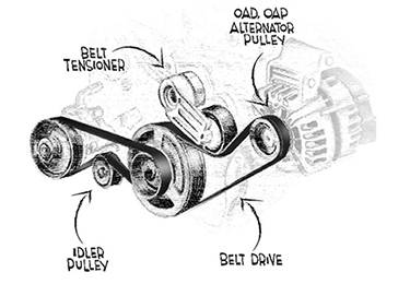 Common Signs Your Drive Belt...